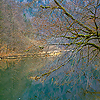 Winter in the Gorges du Doubs - 2
